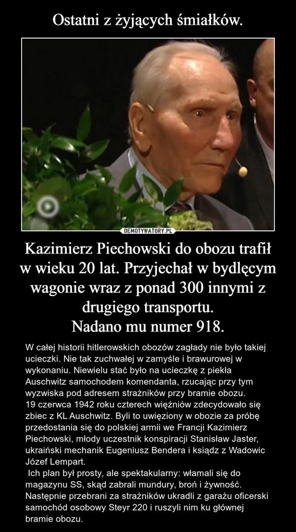 Kazimierz Piechowski do obozu trafiłw wieku 20 lat. Przyjechał w bydlęcym wagonie wraz z ponad 300 innymi z drugiego transportu.Nadano mu numer 918. – W całej historii hitlerowskich obozów zagłady nie było takiej ucieczki. Nie tak zuchwałej w zamyśle i brawurowej w wykonaniu. Niewielu stać było na ucieczkę z piekła Auschwitz samochodem komendanta, rzucając przy tym wyzwiska pod adresem strażników przy bramie obozu. 19 czerwca 1942 roku czterech więźniów zdecydowało się zbiec z KL Auschwitz. Byli to uwięziony w obozie za próbę przedostania się do polskiej armii we Francji Kazimierz Piechowski, młody uczestnik konspiracji Stanisław Jaster, ukraiński mechanik Eugeniusz Bendera i ksiądz z Wadowic Józef Lempart. Ich plan był prosty, ale spektakularny: włamali się do magazynu SS, skąd zabrali mundury, broń i żywność. Następnie przebrani za strażników ukradli z garażu oficerski samochód osobowy Steyr 220 i ruszyli nim ku głównej bramie obozu.