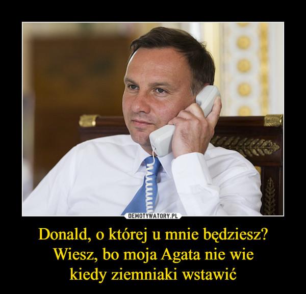 Donald, o której u mnie będziesz?Wiesz, bo moja Agata nie wiekiedy ziemniaki wstawić –