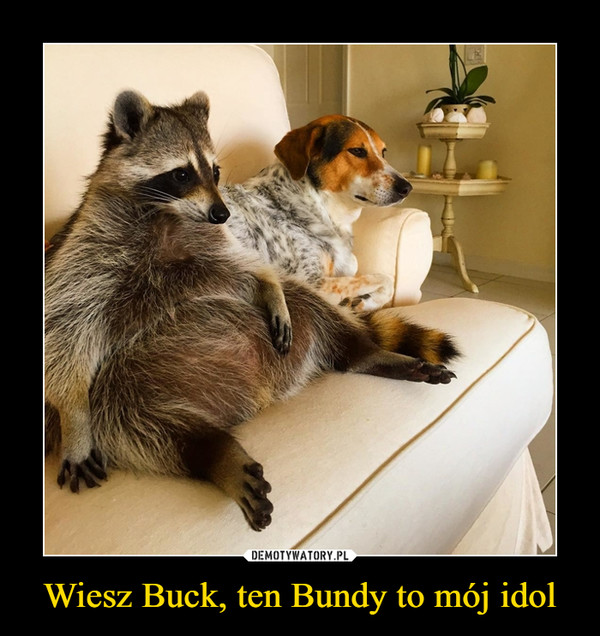 Wiesz Buck, ten Bundy to mój idol –