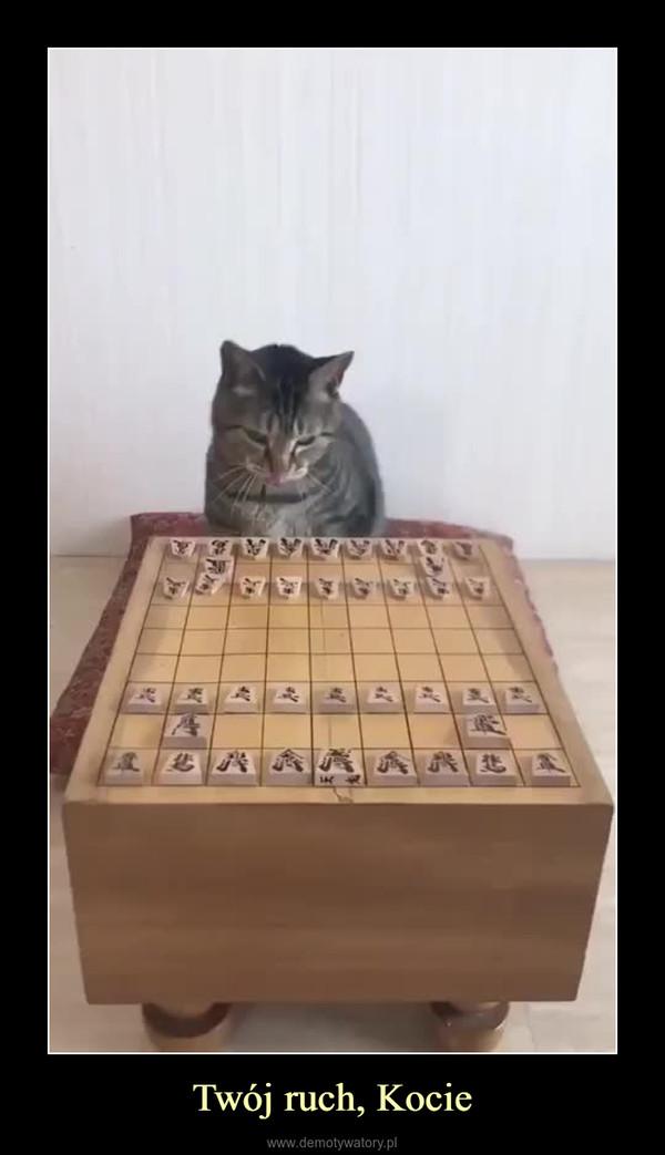 Twój ruch, Kocie –