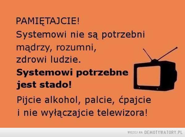 Taka prawda –  PAMIĘTAJCIE! Systemowi nie są potrzebni mądrzy, rozumni, zdrowi ludzie. Systemowi potrzebne jest stado! Pijcie alkohol, palcie, ćpajcie i nie wyłączajcie telewizora!