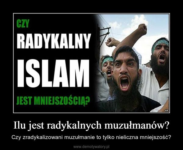 Ilu jest radykalnych muzułmanów? – Czy zradykalizowani muzułmanie to tylko nieliczna mniejszość?