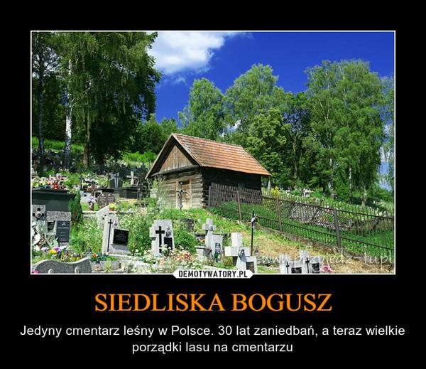 SIEDLISKA BOGUSZ – Jedyny cmentarz leśny w Polsce. 30 lat zaniedbań, a teraz wielkie porządki lasu na cmentarzu