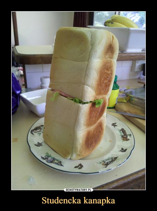 Studencka kanapka –