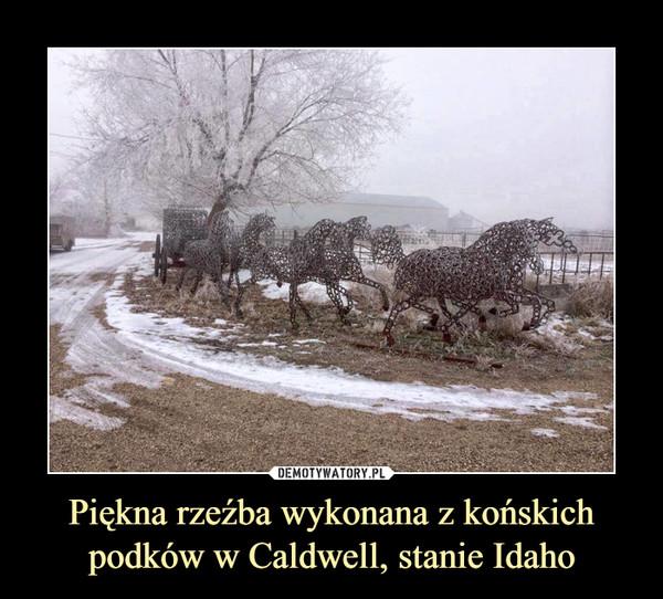 Piękna rzeźba wykonana z końskichpodków w Caldwell, stanie Idaho –