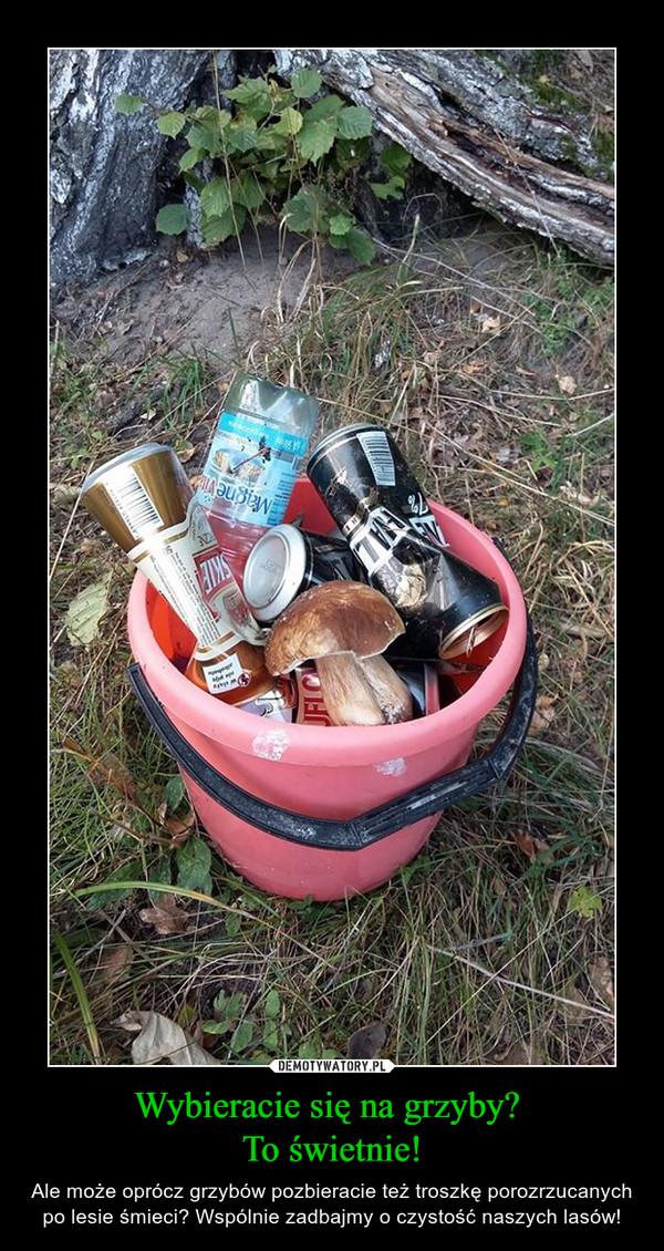 Wybieracie się na grzyby? To świetnie! – Ale może oprócz grzybów pozbieracie też troszkę porozrzucanych po lesie śmieci? Wspólnie zadbajmy o czystość naszych lasów!