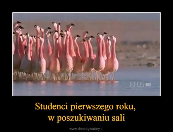 Studenci pierwszego roku, w poszukiwaniu sali –