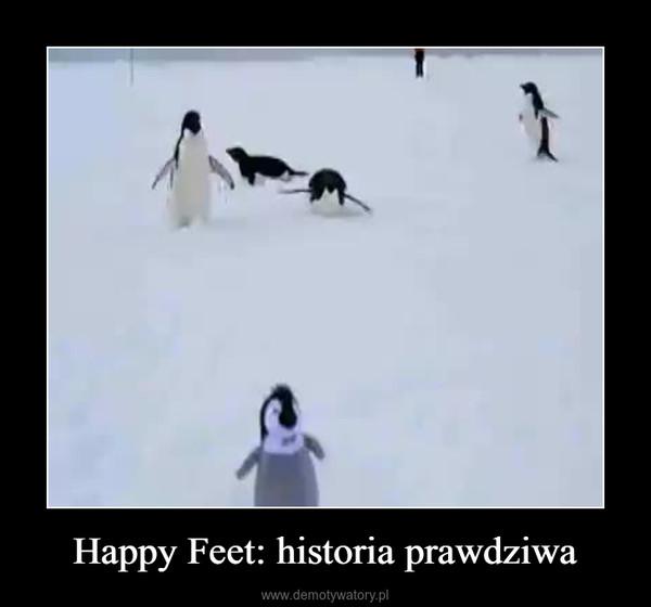 Happy Feet: historia prawdziwa –