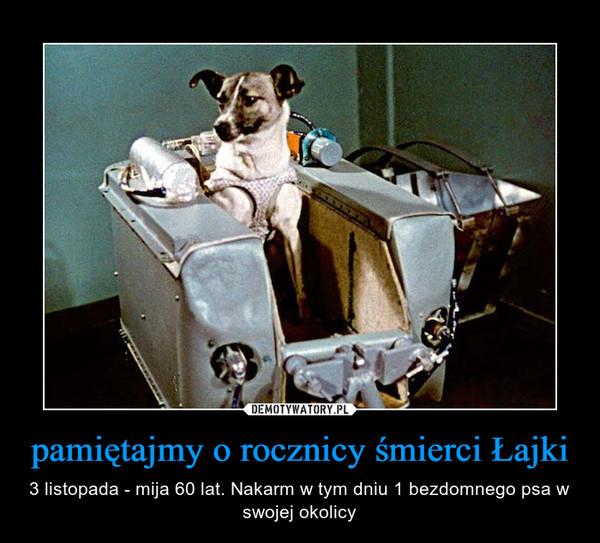 pamiętajmy o rocznicy śmierci Łajki – 3 listopada - mija 60 lat. Nakarm w tym dniu 1 bezdomnego psa w swojej okolicy