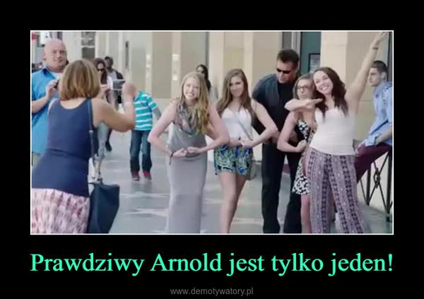 Prawdziwy Arnold jest tylko jeden! –