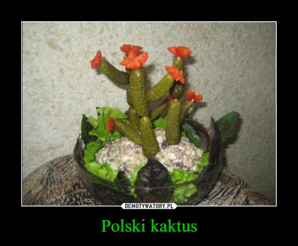 Polski kaktus –