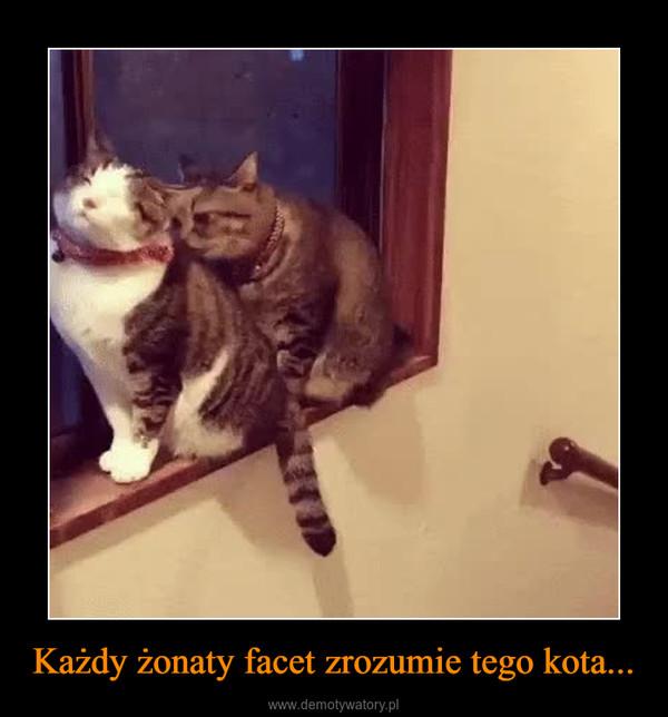 Każdy żonaty facet zrozumie tego kota... –