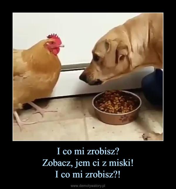 I co mi zrobisz?Zobacz, jem ci z miski!I co mi zrobisz?! –