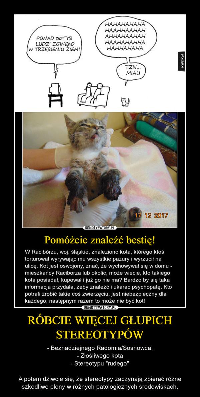 """RÓBCIE WIĘCEJ GŁUPICH STEREOTYPÓW – - Beznadziejnego Radomia/Sosnowca.- Złośliwego kota- Stereotypu """"rudego""""A potem dziwcie się, że stereotypy zaczynają zbierać różne szkodliwe plony w różnych patologicznych środowiskach."""