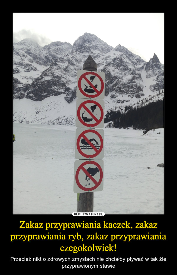 Zakaz przyprawiania kaczek, zakaz przyprawiania ryb, zakaz przyprawiania czegokolwiek! – Przecież nikt o zdrowych zmysłach nie chciałby pływać w tak źle przyprawionym stawie