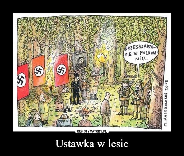 Ustawka w lesie –