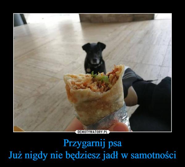 Przygarnij psaJuż nigdy nie będziesz jadł w samotności –