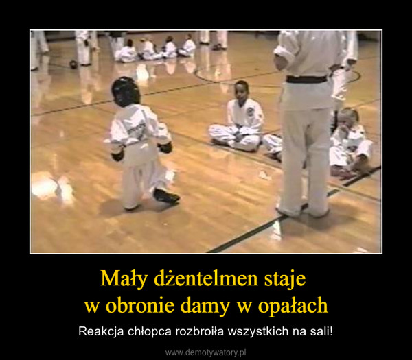 Mały dżentelmen staje w obronie damy w opałach – Reakcja chłopca rozbroiła wszystkich na sali!