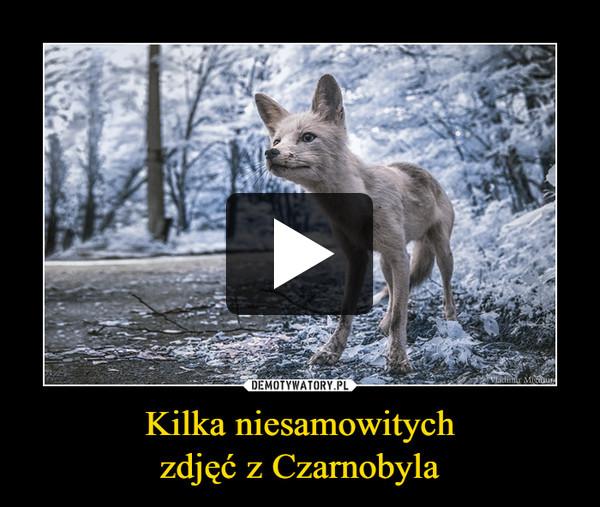 Kilka niesamowitychzdjęć z Czarnobyla –
