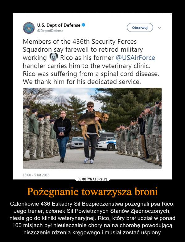 Pożegnanie towarzysza broni – Członkowie 436 Eskadry Sił Bezpieczeństwa pożegnali psa Rico. Jego trener, członek Sił Powietrznych Stanów Zjednoczonych, niesie go do kliniki weterynaryjnej. Rico, który brał udział w ponad 100 misjach był nieuleczalnie chory na na chorobę powodującą niszczenie rdzenia kręgowego i musiał zostać uśpiony Members of the 436th Security Forces Squadron say farewell to retired military working (4;11 Rico as his former @USAirForce handler carries him to the veterinary clinic. Rico was suffering from a spinal cord disease. We thank him for his dedicated service.