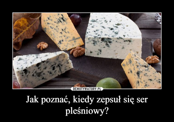 Jak poznać, kiedy zepsuł się ser pleśniowy? –
