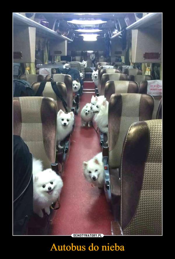 Autobus do nieba –