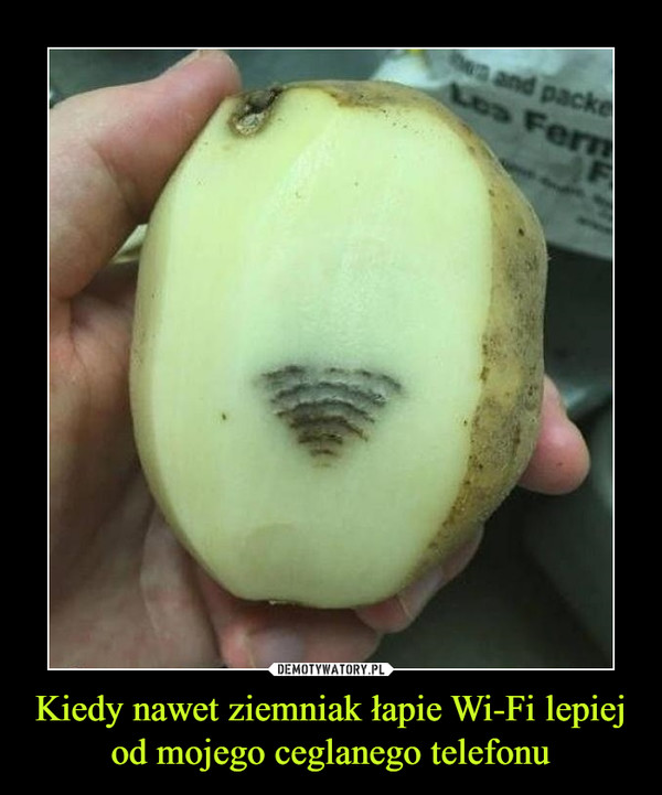 Kiedy nawet ziemniak łapie Wi-Fi lepiej od mojego ceglanego telefonu –