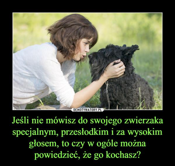 Jeśli nie mówisz do swojego zwierzaka specjalnym, przesłodkim i za wysokim głosem, to czy w ogóle można powiedzieć, że go kochasz? –