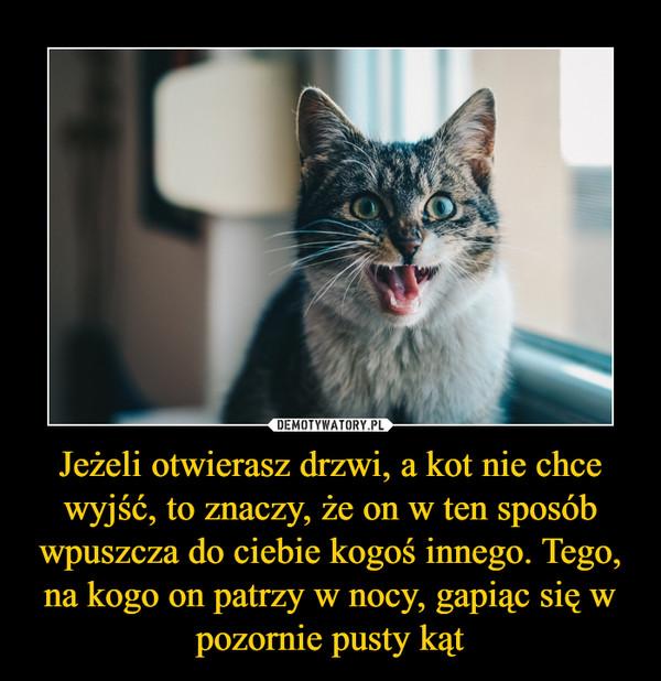 Jeżeli otwierasz drzwi, a kot nie chce wyjść, to znaczy, że on w ten sposób wpuszcza do ciebie kogoś innego. Tego, na kogo on patrzy w nocy, gapiąc się w pozornie pusty kąt –