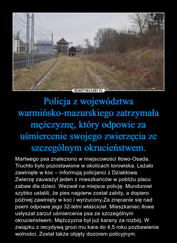 Policja z województwa warmińsko-mazurskiego zatrzymała mężczyznę, który odpowie za uśmiercenie swojego zwierzęcia ze szczególnym okrucieństwem. – Martwego psa znaleziono w miejscowości Iłowo-Osada. Truchło było pozostawione w okolicach torowiska. Leżało zawinięte w koc – informują policjanci z Działdowa.Zwierzę zauważył jeden z mieszkańców w pobliżu placu zabaw dla dzieci. Wezwał na miejsce policję. Mundurowi szybko ustalili, że pies najpierw został zabity, a dopiero później zawinięty w koc i wyrzucony.Za znęcanie się nad psem odpowie jego 32-letni właściciel. Mieszkaniec Iłowa usłyszał zarzut uśmiercenia psa ze szczególnym okrucieństwem. Mężczyzna był już karany za rozbój. W związku z recydywą grozi mu kara do 4,5 roku pozbawienia wolności. Został także objęty dozorem policyjnym.