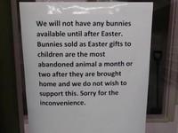 """""""Sprzedaż królików będzie wstrzymana do czasu zakończenia świąt wielkanocnych. Króliki są bardzo popularnym prezentem w tym okresie i wiele z nich jest później zwracanych. Przepraszamy za niedogodności"""" –"""