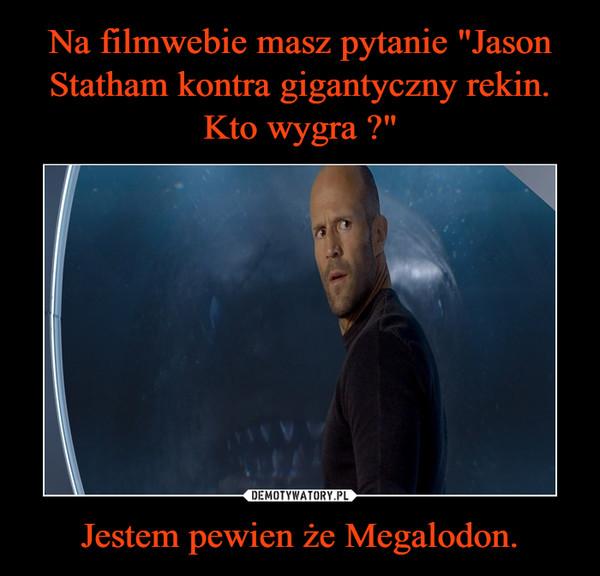 Jestem pewien że Megalodon. –