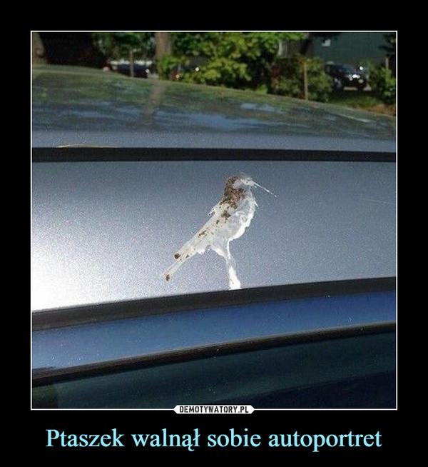 Ptaszek walnął sobie autoportret –