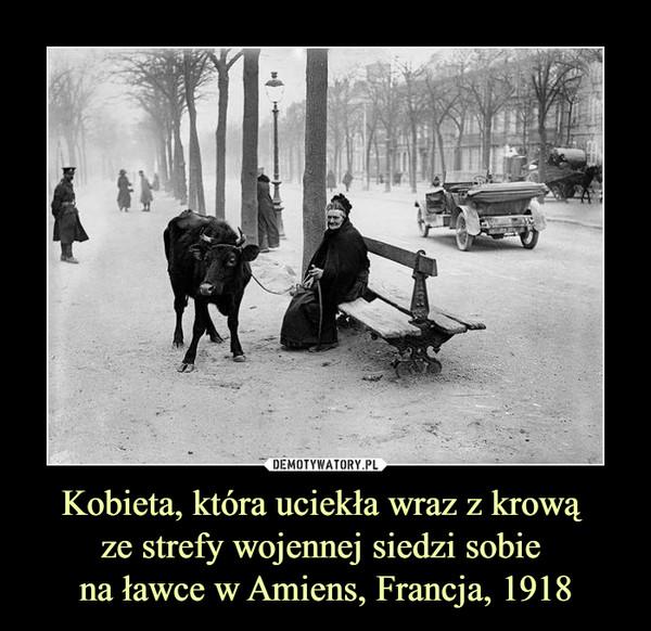 Kobieta, która uciekła wraz z krową ze strefy wojennej siedzi sobie na ławce w Amiens, Francja, 1918 –