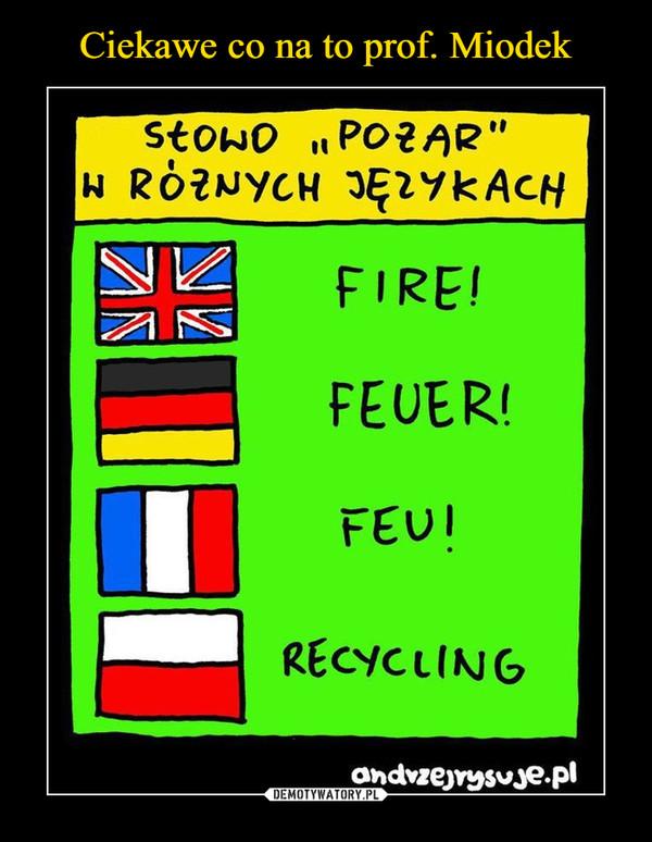 –  słowo pożar w różnych językachfirefeuerfeurecycling