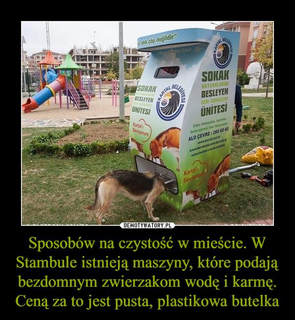 Sposobów na czystość w mieście. W Stambule istnieją maszyny, które podają bezdomnym zwierzakom wodę i karmę. Ceną za to jest pusta, plastikowa butelka –