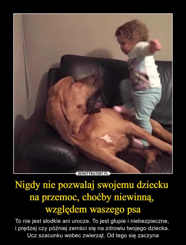 Nigdy nie pozwalaj swojemu dziecku na przemoc, choćby niewinną, względem waszego psa – To nie jest słodkie ani urocze. To jest głupie i niebezpieczne, i prędzej czy później zemści się na zdrowiu twojego dziecka. Ucz szacunku wobec zwierząt. Od tego się zaczyna