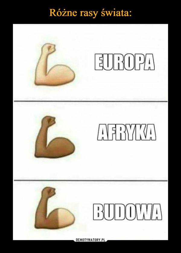–  Europa Afryka Budowa