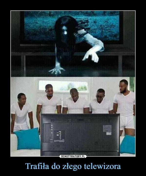 Trafiła do złego telewizora –