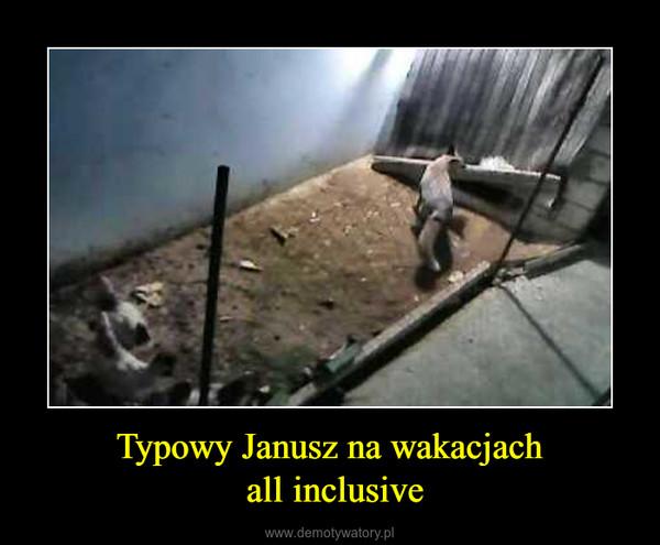 Typowy Janusz na wakacjach all inclusive –