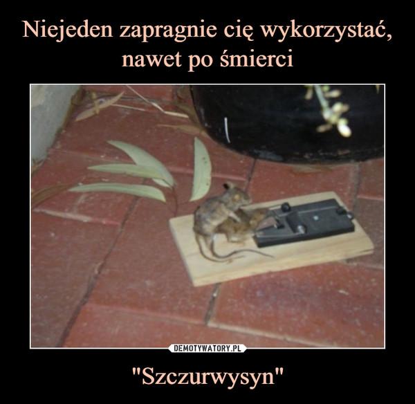 """Szczurwysyn"" –"