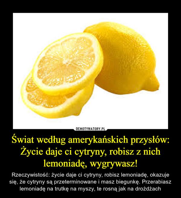 Świat według amerykańskich przysłów: Życie daje ci cytryny, robisz z nich lemoniadę, wygrywasz! – Rzeczywistość: życie daje ci cytryny, robisz lemoniadę, okazuje się, że cytryny są przeterminowane i masz biegunkę. Przerabiasz lemoniadę na trutkę na myszy, te rosną jak na drożdżach