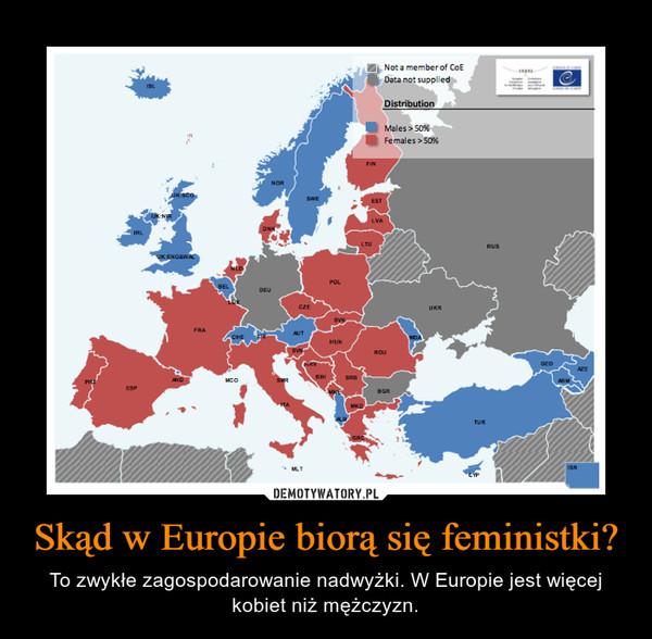 Skąd w Europie biorą się feministki? – To zwykłe zagospodarowanie nadwyżki. W Europie jest więcej kobiet niż mężczyzn.