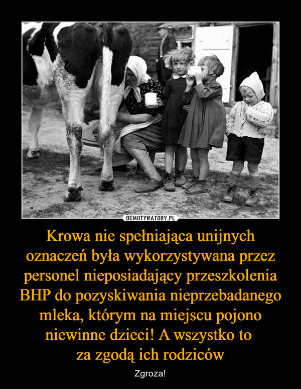Krowa nie spełniająca unijnych oznaczeń była wykorzystywana przez personel nieposiadający przeszkolenia BHP do pozyskiwania nieprzebadanego mleka, którym na miejscu pojono niewinne dzieci! A wszystko to za zgodą ich rodziców – Zgroza!
