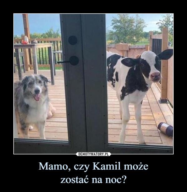 Mamo, czy Kamil możezostać na noc? –