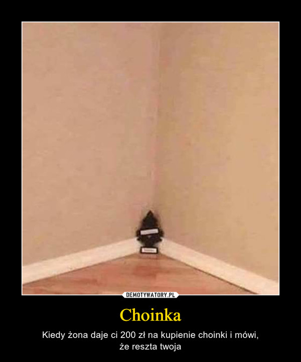 Choinka – Kiedy żona daje ci 200 zł na kupienie choinki i mówi,że reszta twoja