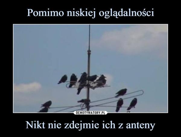 Nikt nie zdejmie ich z anteny –
