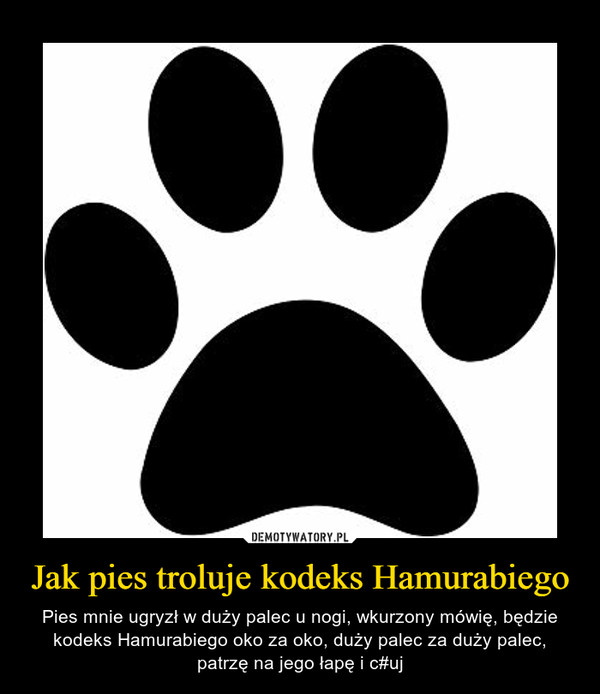 Jak pies troluje kodeks Hamurabiego – Pies mnie ugryzł w duży palec u nogi, wkurzony mówię, będzie kodeks Hamurabiego oko za oko, duży palec za duży palec, patrzę na jego łapę i c#uj