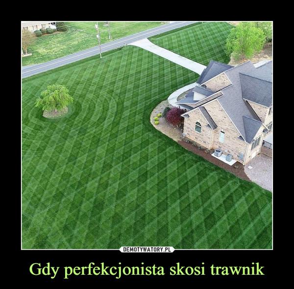 Gdy perfekcjonista skosi trawnik –