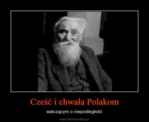 Cześć i chwała Polakom – walczącym o niepodległość